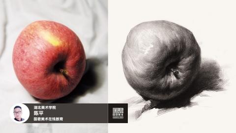 素描静物_单体_苹果_侧面2_陈平