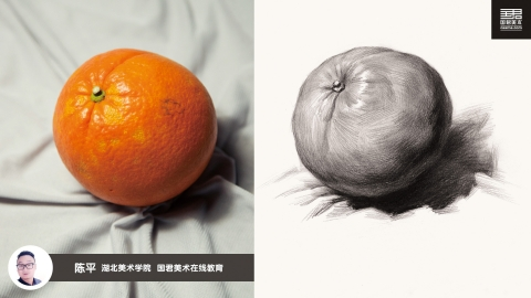素描静物_单体_桔子2_陈平
