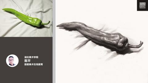 素描静物_单体_长青椒_陈平