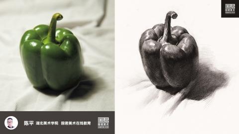 素描静物_单体_青椒_陈平