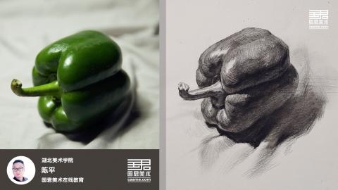 素描静物_单体_青椒3_陈平