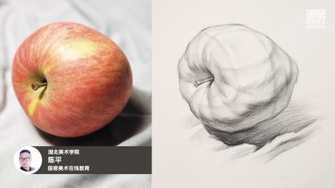 素描静物_结构素描_单体_苹果_侧面_陈平