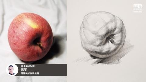 素描静物_结构素描_单体_苹果_侧面2_陈平