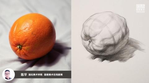 素描静物_结构素描_单体_桔子_陈平