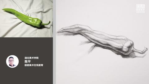 素描静物_结构素描_单体_长青椒_陈平