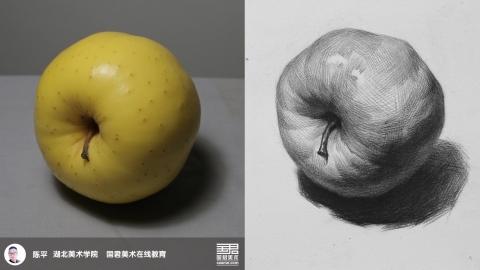 素描静物_单体_黄苹果2_陈平