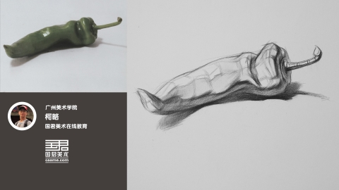 静物结构素描_单体_长青椒_柯略