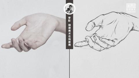 人物速写_局部手_男士手4_白描_李彭