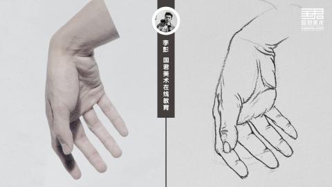 人物速写_局部手_男士手8_白描_李彭